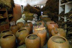 Herbal store room